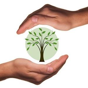 Становище относно Закона за изменение и допълнение на Закона за опазване на околната среда (ЗИД на ЗООС)